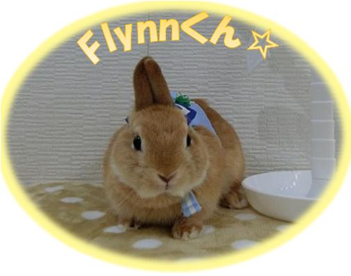 Flynnくん