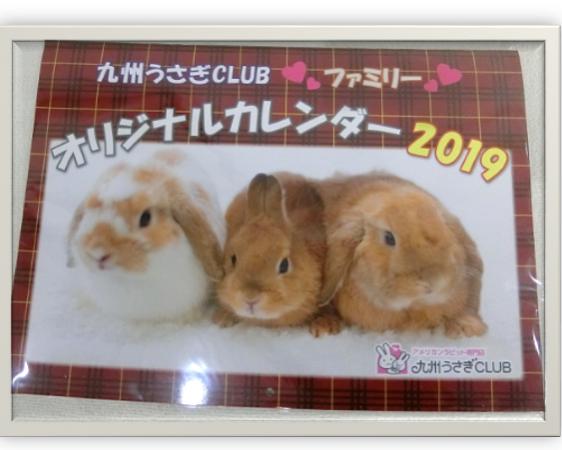 九州うさぎCLUBオリジナルカレンダー 2019