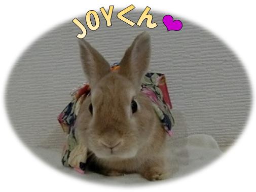 JOYくん