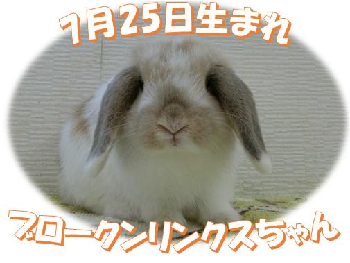 7月25日生まれBKNリンクスちゃん
